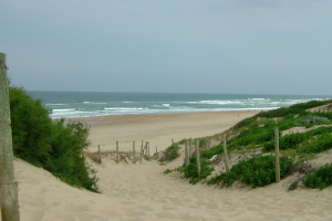 mellow waves hossegor, mellow waves france, surf hossegor, waves hossegor, surf trip hossegor, surf camp hossegor